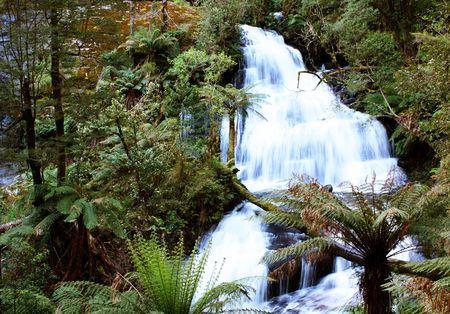 Triplet falls, Otway National Park, Australia