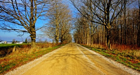 an empty country road in the southwestern Ontario photo