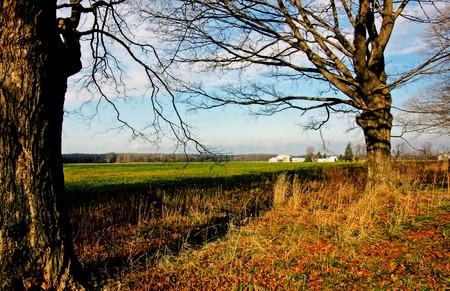 southwestern ontario: a rural scene in the southwestern Ontario