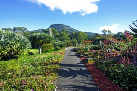 a view of the Wollongong Botanical Gardens in Australia