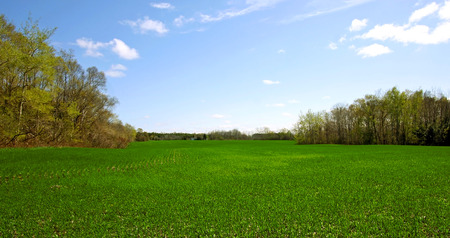a view of the countryside in the spring