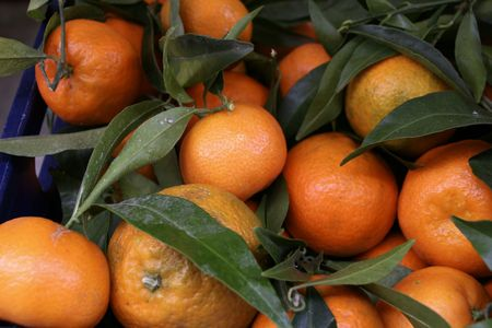 clementine fruit: Crate of fresh clementine fruit