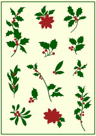 a sprig: holly(christmas)