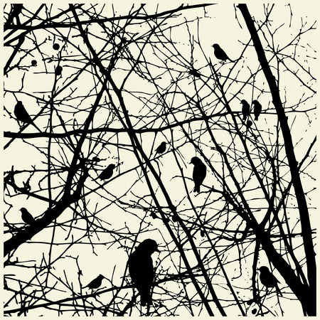 tree shadow: birds Illustration