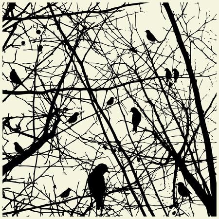 bird clipart: uccelli Vettoriali