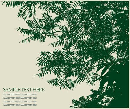 alpine plants: background Illustration