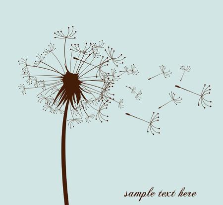 flowers fluffy:  vector dandelion Illustration
