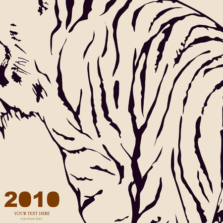 tiger Stock Vector - 6273084