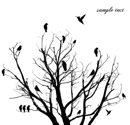 birds in a tree: tree
