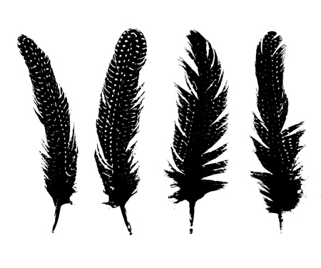 black feather: feather