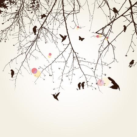 birds in tree: tree