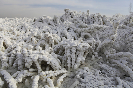 sulfate: On January 19, 2016, filmed in yanchi County, in yuncheng city, Shanxi province, such as Glaubers salt with Crystal coral.