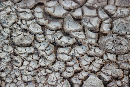 cracked earth: Cracked earth drought Stock Photo