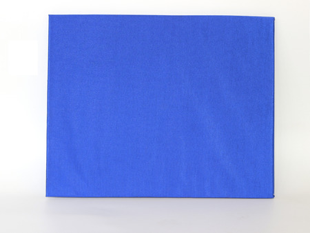 alumna: Diploma on white background