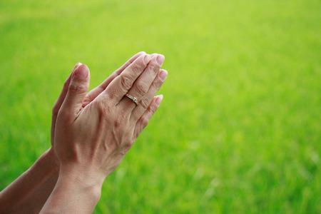 Frau setzte die Palmen der Hände in grüne Reisfelder Hintergrund