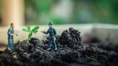 Miniature people team works to inspect and plant trees for a green world project. (We plant trees for a better world) Stockfoto