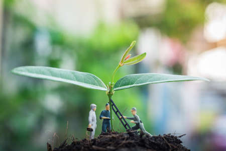 Miniature people team works to inspect and plant trees for a green world project. (We plant trees for a better world)