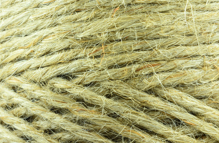 cordage: rope, may use as background