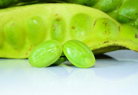 stinking: Tropical stinking edible beans on white background (Parkia Speciosa)