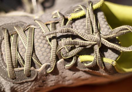 shoelace: Shoelace Stock Photo