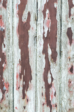 background texture: wood background and texture