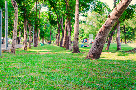 excercise: public park in the city for relax and excercise Editorial