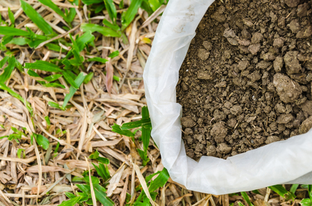 Dry cow dung in bag,Dry manure on grass background