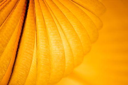 papierlaterne: Chinesisch paper Lantern in leuchtenden orange Licht bei Nacht