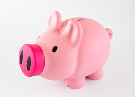 Piggybank with pink nose, isolated over white.