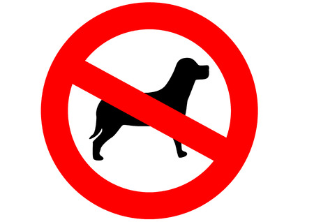 A red sign meaning dogs are not allowed here on the white background photo