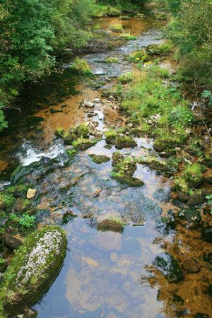 spruit: a little stream in the mountain valley
