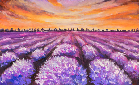 lavender oil: Colorful france lavender field at sunset hand made oil painting on canvas. Impressionist art. Stock Photo
