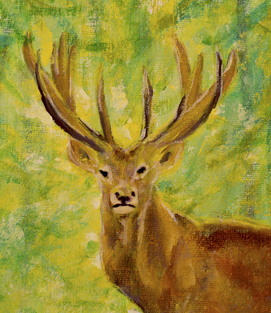 artwork painting: Original oil painting of portrait of deer in autumn forest on canvas. Modern Impressionism Art. Artwork.