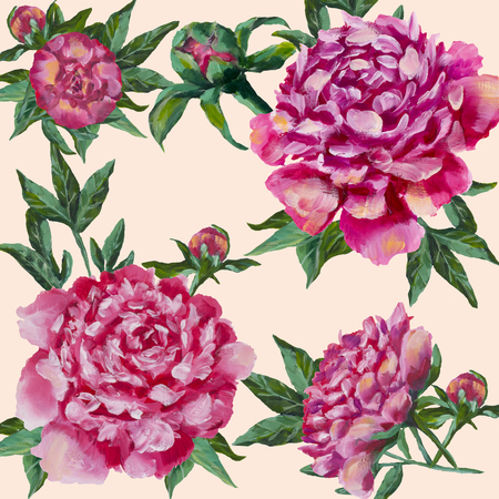 Pink peonies hand painted. Peony with buds and leaves, watercolor, can be used as greeting card, Invitation card for wedding birthday and other holiday. Isolated on a white background.