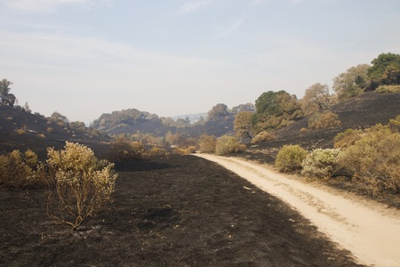 Santa Rosa - Shiloh Regional Park after Fire, night from Sunday October 8 to Monday October 9