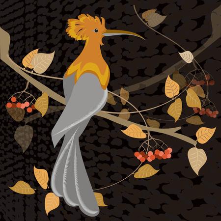 rowan tree: hoopoe bird on a branch