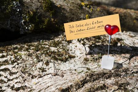 """love of life: Tedesco citazione scritta a mano """"Amo la vita e la vita mi ama"""" (Amo la mia vita e la mia vita mi ama) ritagliato su un cuore su legno"""