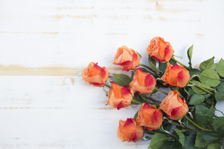 rose petals: bunch of beautiful orange roses on a white vintage wooden background