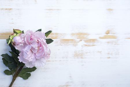 白いヴィンテージの木製の背景に美しいピンク牡丹 写真素材