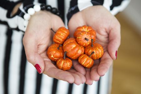 womans hands: womans hands holding little pumpkins Stock Photo