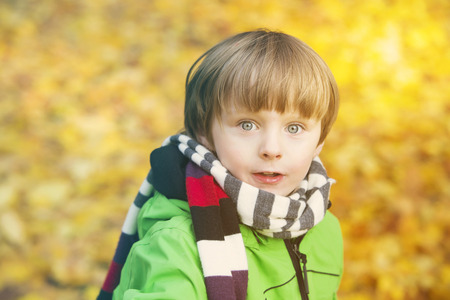 jungle boy: portrait of a boy in a park in the fall