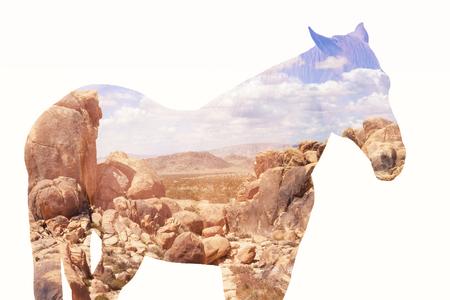 Dubbele blootstelling van bruin paard en rotsachtige woestijn