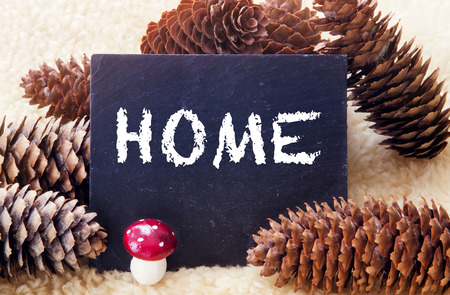 pinecones and chalkboard with the word Home written on it Banco de Imagens
