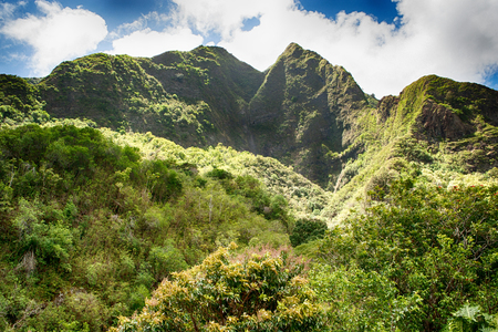 Belle montagne verte et la forêt tropicale sur Maui Banque d'images - 90385471