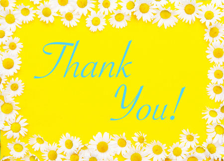 Thank You written on yellow background framed by white daisies