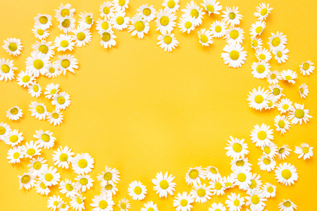 Framed yellow background with white beautiful daisies Stok Fotoğraf