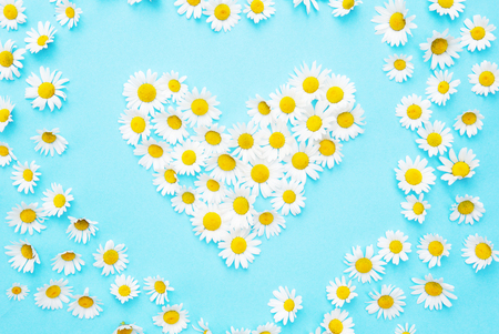 White daisies in a heart shape on blue background