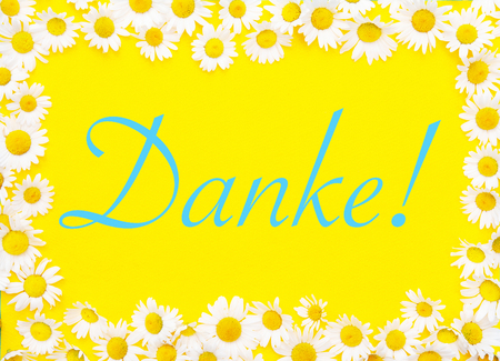 German word for Thank You on yellow background framed by white daisies