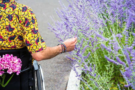 man in colorful shirt sitting in a wheelchair and touching flowers outdoors