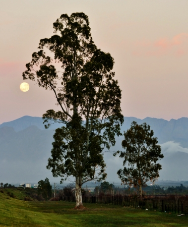 Full Moon over mountains in Worcester Western Cape South Africa photo